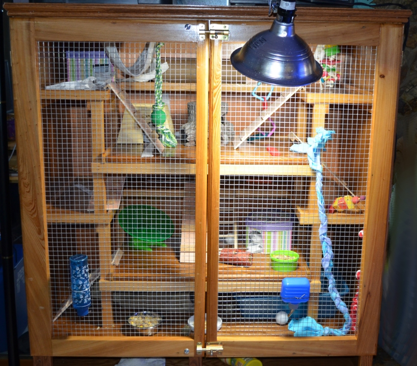 Everything is in ready for the new residents or rodents...