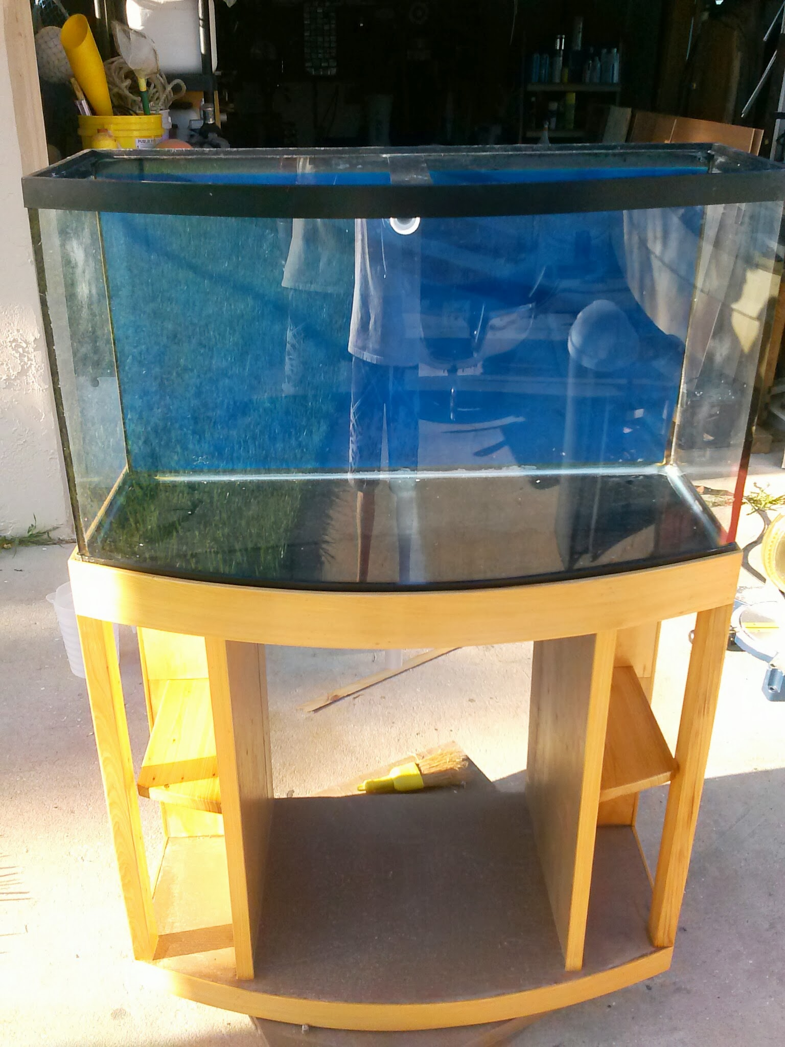 Tank fits great planet hernando diy projects for Bow front fish tank